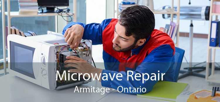 Microwave Repair Armitage - Ontario